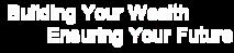 Wealth Safe's Company logo