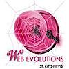 Web Evolutions Web Designs, St. Kitts & Nevis's Company logo