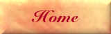 Weddings By Delia's Company logo