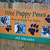 Wee Puppy Paws Chihuahua Yorkie And Maltese Dogs Homestead Fl's Company logo