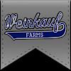 Weinkauf Farms Showpigs's Company logo