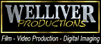 Welliver Studios's Company logo