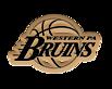 Wpabruins's Company logo