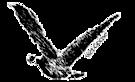 Wet Goose Marine's Company logo