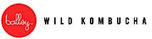 Wild Kombucha By Ballsy's Company logo