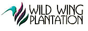 Playwildwing's Company logo