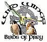 Wild-wings's Company logo