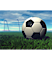 Petoskey Youth Soccer Association's Competitor - Winter Haven Youth Soccer Association (Whysa) logo