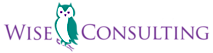 Wise Consulting Associates's Company logo