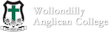 Wollondilly Anglican College's Company logo