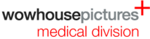 Wowhousepictures's Company logo