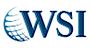 Cape Travel Online's Competitor - WSI  logo