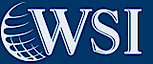 Previewmywsisite's Company logo