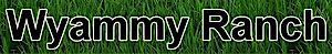 Wyammy Quarter Horse Ranch's Company logo