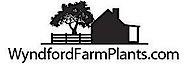Wyndford Farm Plants's Company logo