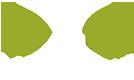 Xds Marketing's Company logo