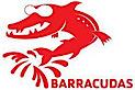 Ybc Barracudas Swim Team's Company logo