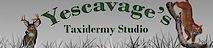 Yescavage's Taxidermy Studio's Company logo