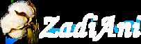 Zadiani's Company logo