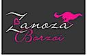 Zanoza Borzoi's Company logo
