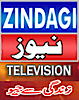Zindagi News's Company logo