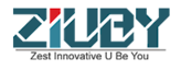Ziuby's Company logo