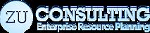 Zu-consulting's Company logo